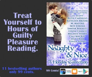 Naughty & Nice a Christmas romance box set